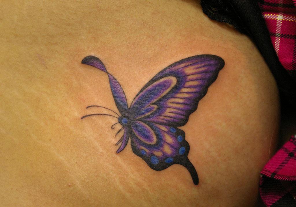 羽が可愛い紫の蝶