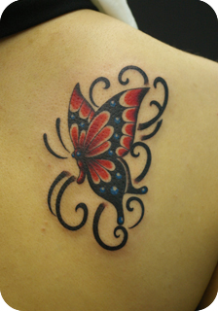 赤い蝶と飾り