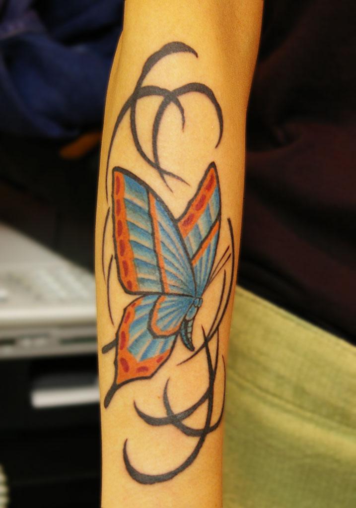 ブルー系の蝶