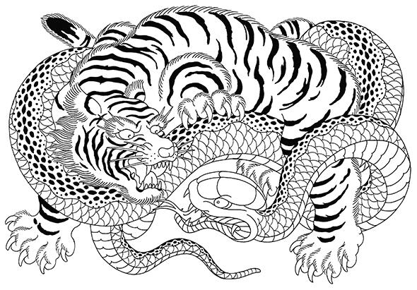虎の画像 p1_27
