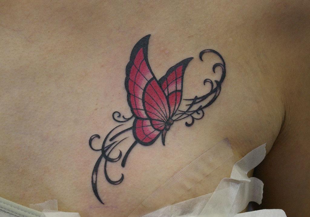 ピンク色の蝶とツタ