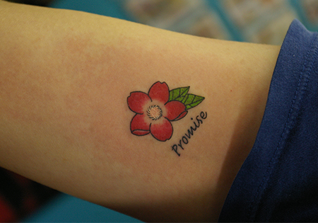 桜の花と文字「promise」