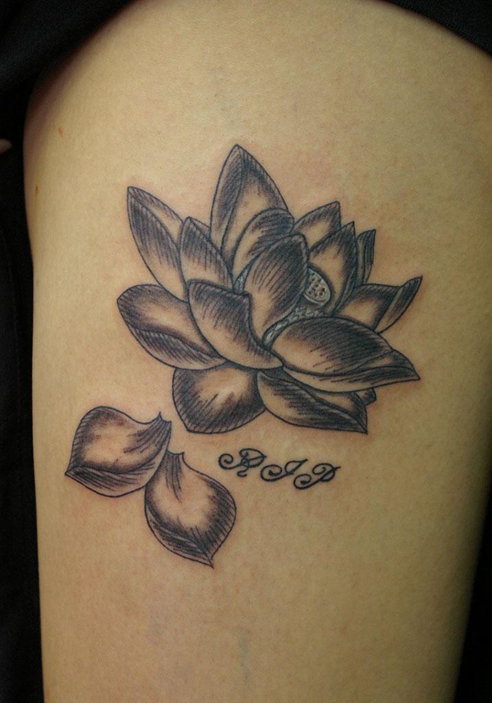 蓮の花と文字