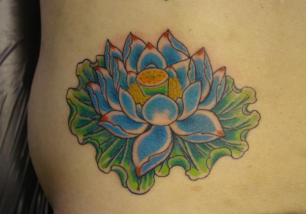 水色の蓮の花