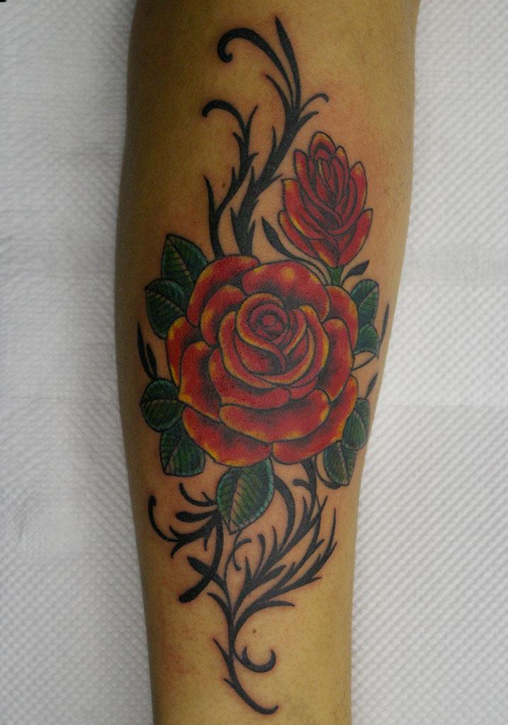 赤いバラとツタ
