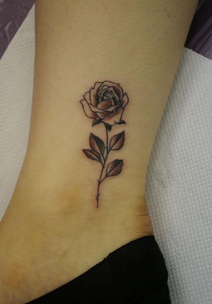 ぼかしをつけた小さな薔薇