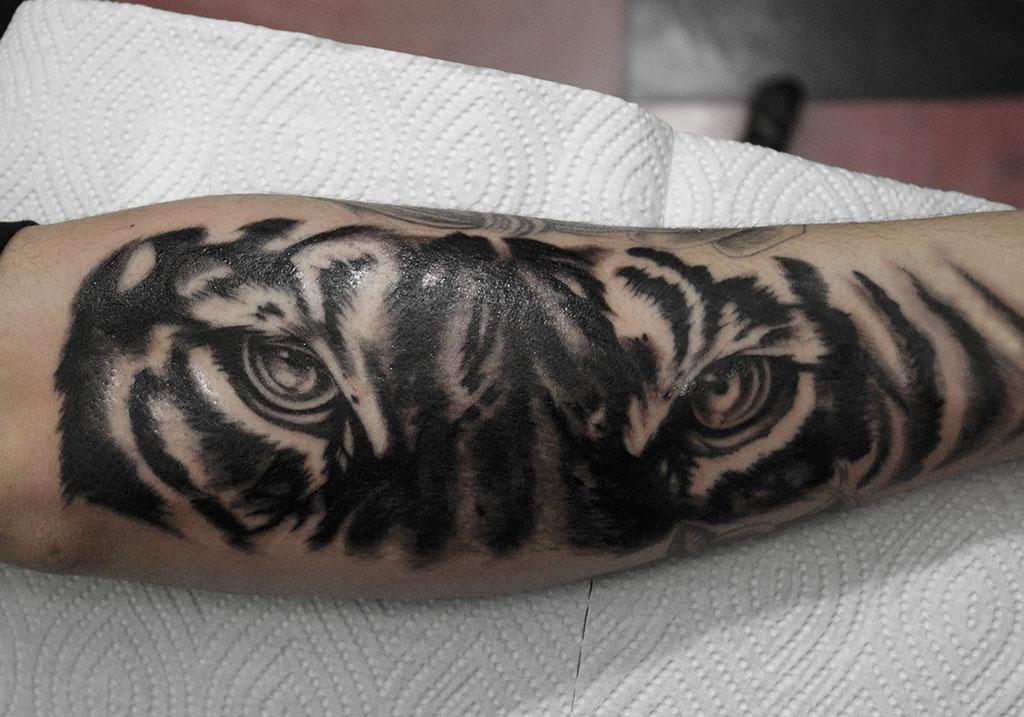 リアリスティックな虎の顔