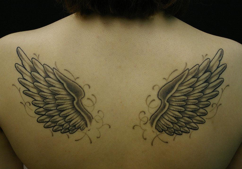 丸みのある翼