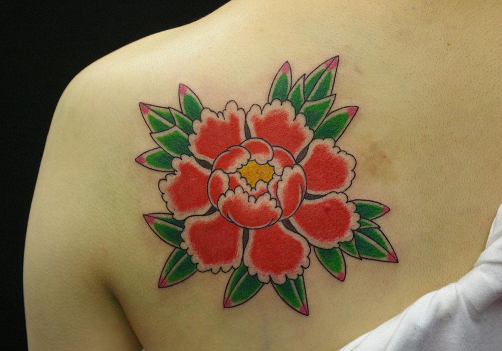 赤色の牡丹の花