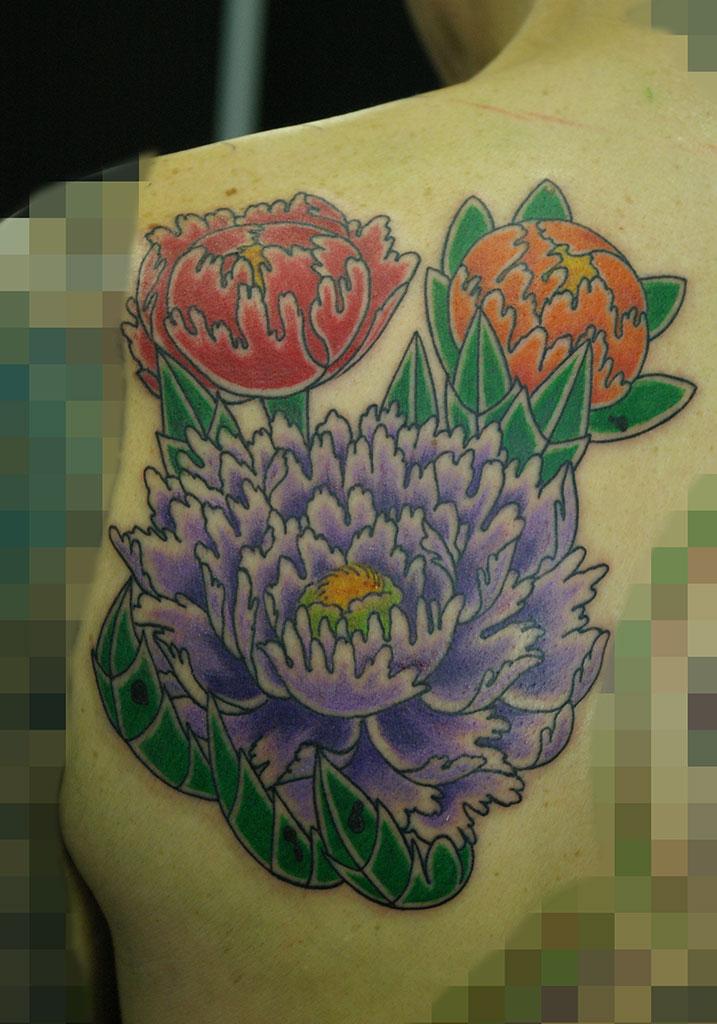 牡丹の花3色