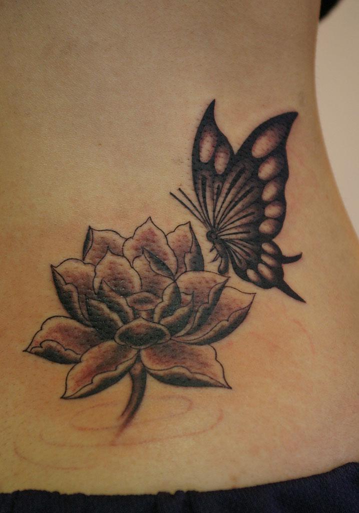 蓮の花と蝶