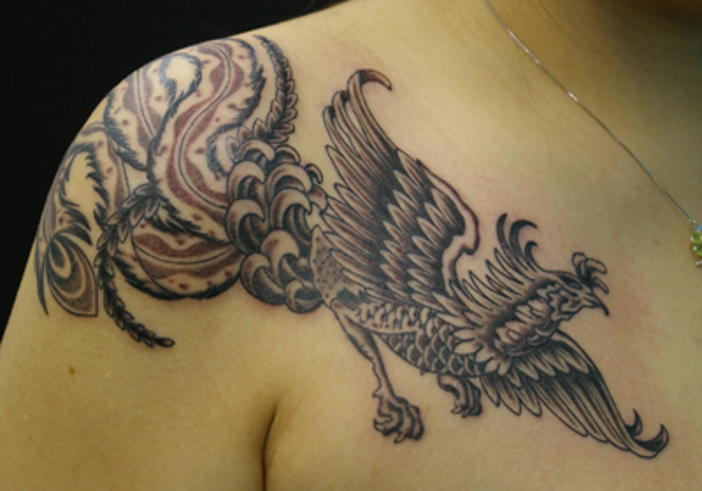 美しい尾の鳳凰