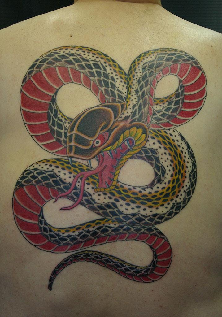蛇背中一面