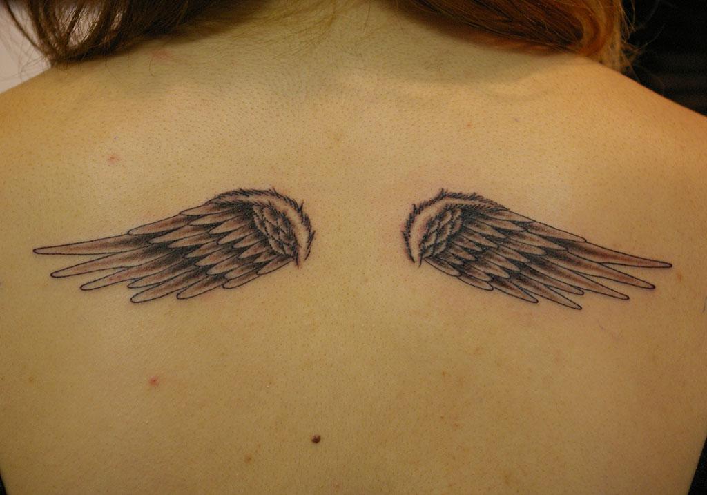 下向きの翼