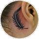 耳裏のフェザー