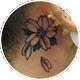 耳裏の桜の花