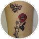 ミツバチと薔薇
