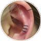 耳への数本のライン
